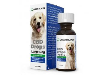 Pet CBD Drops for Large Dog 600mg