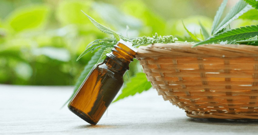 Healing with Hemp Oil: Nature's Best Kept Secret in 2018