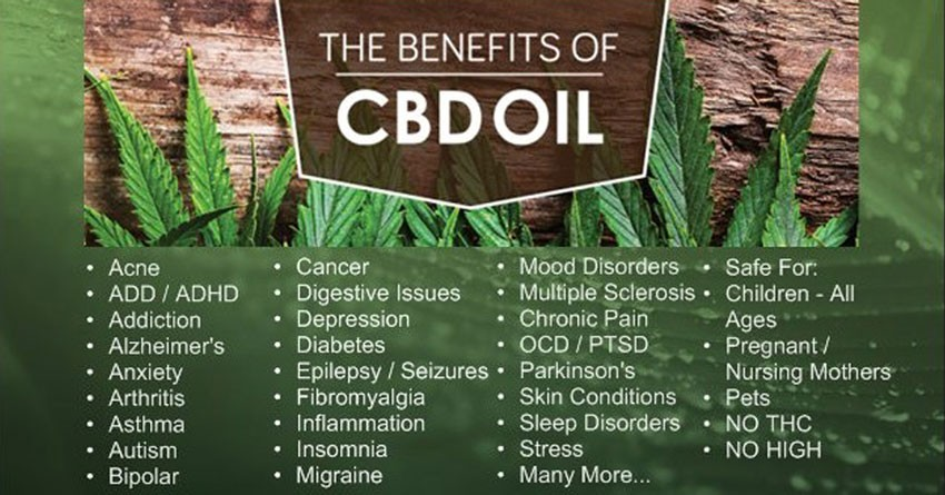 Eight Proven Benefits of CBD Oil