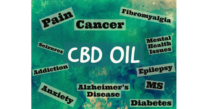 CBD can heal broken Bones