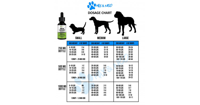 How Much CBD Oil Should You Give to Your Dog? Choosing the Right Dosage.
