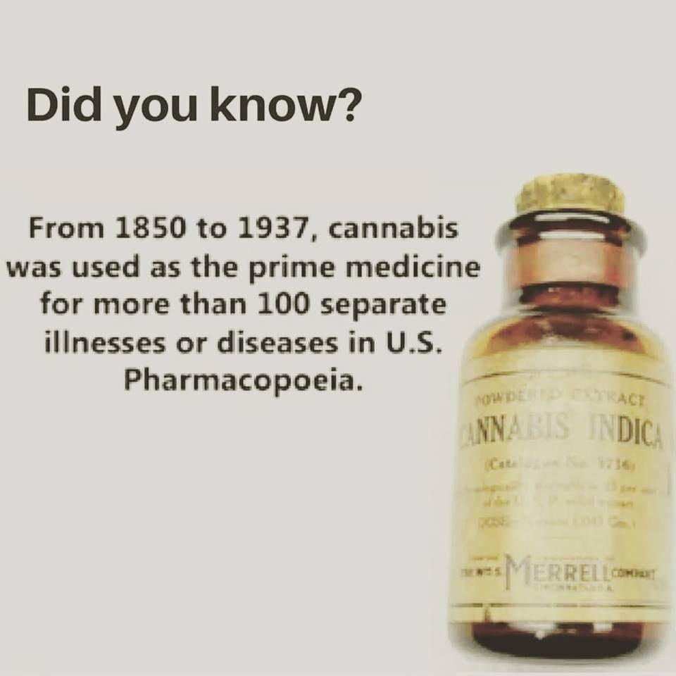 Did you know that CBD Oil was used since 1850 as the prime medicine?