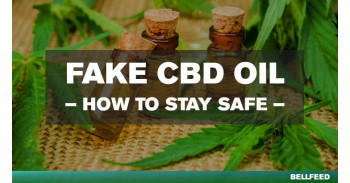 Protect your Health from fake CBD Oil