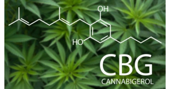 CBD and CBG - What is the difference?