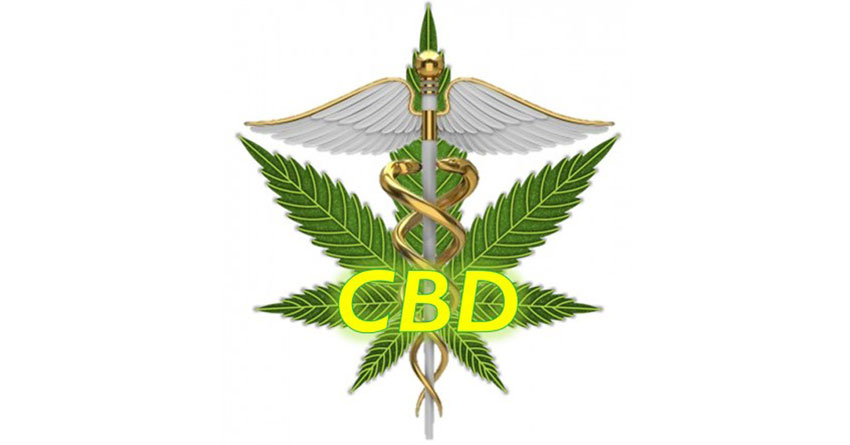 Did You Know That Nearly Half Of People Who Use CBD Cannabidiol Products Stop Taking Traditional Medicines?